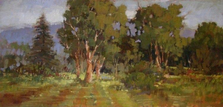 Ardenwood Eucalyptus, 12 x 24