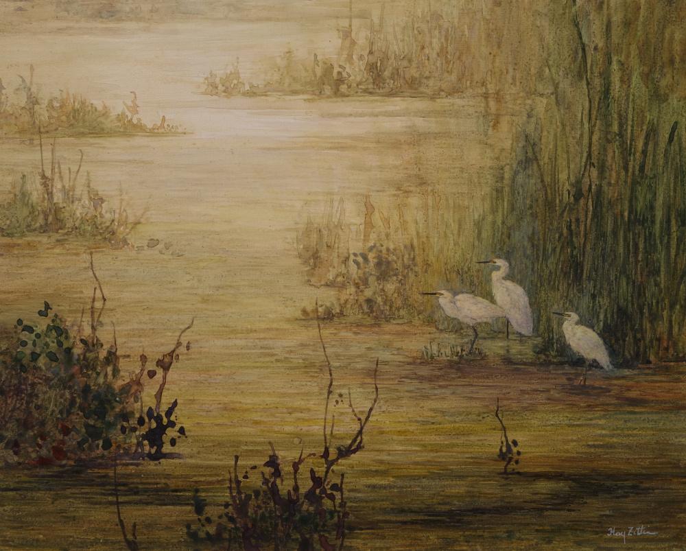 Zittin, Marsh at dusk