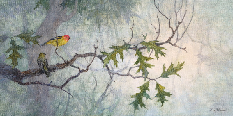 """Western Tanager Pair"" watercolor painting by Floy Zittin"