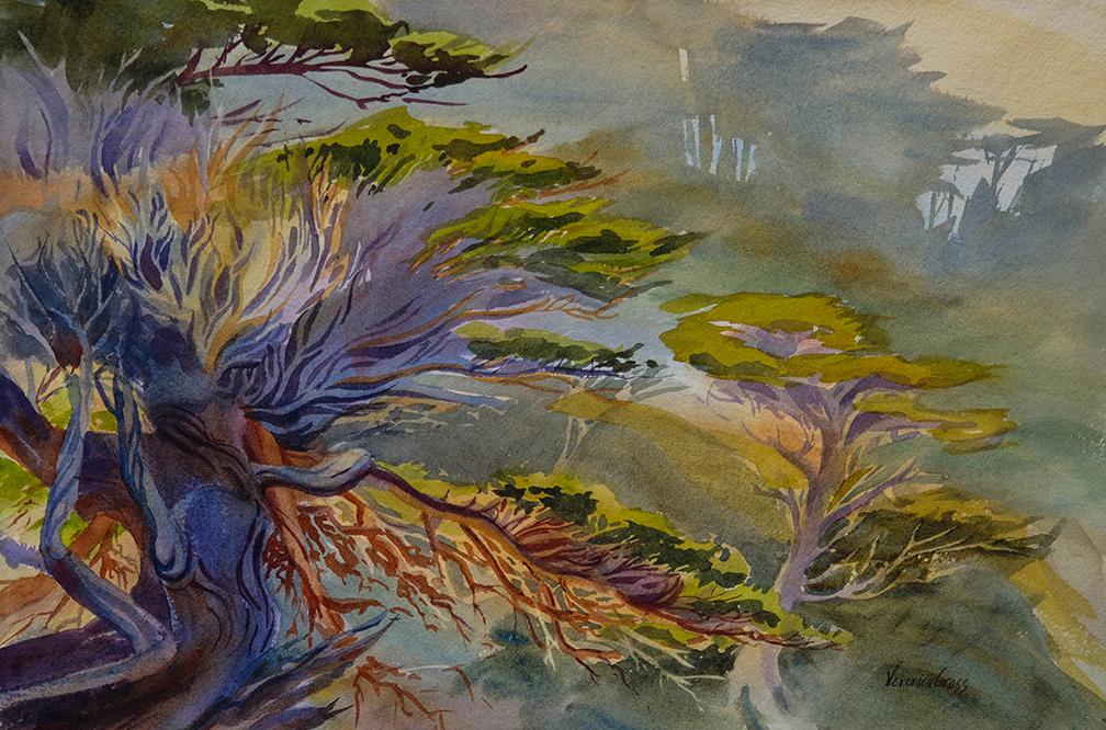 Point Lobos Vision